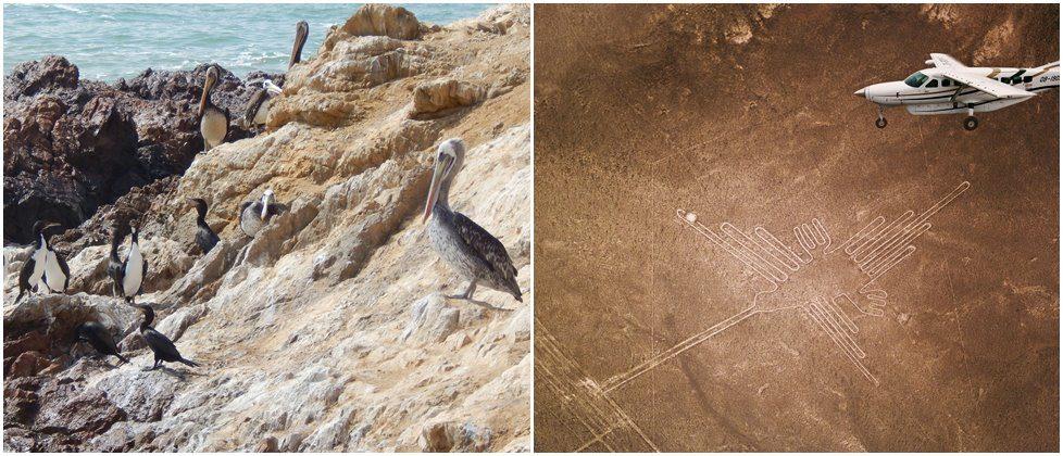 Ballestas oeerne og Nazca Linjerne