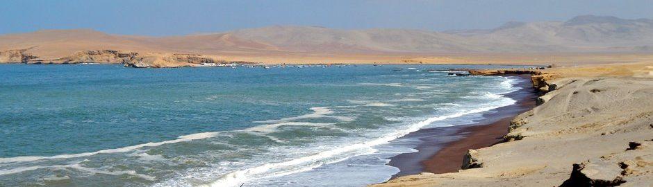 Paracas strand i Peru